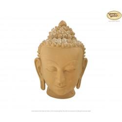 Großer Ton-Buddhakopf, Buddha-Büste